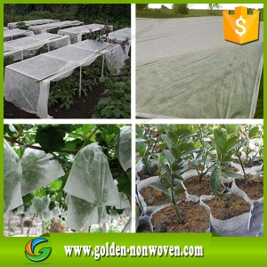 Agriculture Greenhouses Nonwoven Fabric made by Quanzhou Golden Nonwoven Co.,ltd