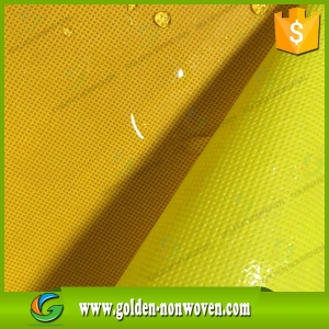 Quanzhou PP Spunbond Nonwoven Fabric made by Quanzhou Golden Nonwoven Co.,ltd
