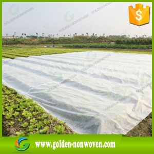 Agriculture PP Nonwoven Fabric Roll for Weed Control made by Quanzhou Golden Nonwoven Co.,ltd